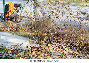 Man with leaf blower fallen autumn leaves in the yard
