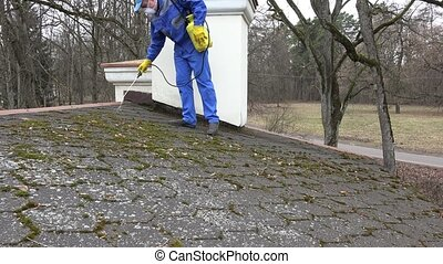 man with protective mask clean moss from roof water...