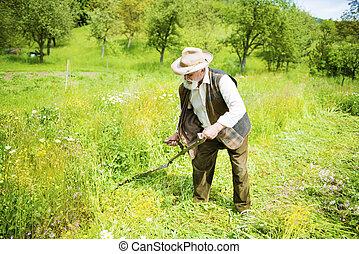 Man with scythe - Old farmer with beard using scythe to mow...