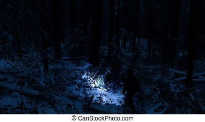 Man With Torch In Snowy Forest At Night