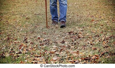 Man with walking stick on the grass