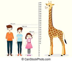 Man, Woman, Girl Measuring Height With Giraffe