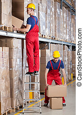 Man working at height in warehouse - Man standing on ladder...