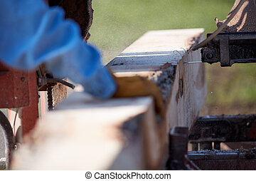 Man working on a portable saw milling lumber