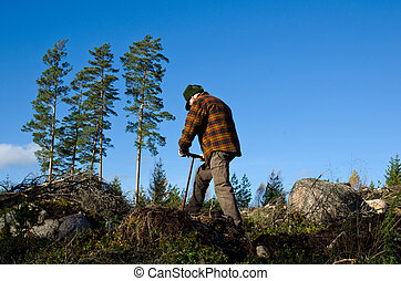 Man working with tree planting