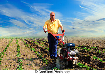 man works in the field with help of the motor cultivator - ...