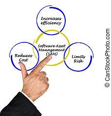 management, aanwinst, software