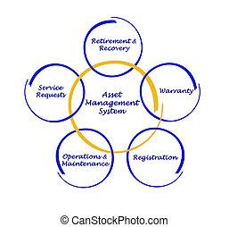 management, aanwinst, systeem
