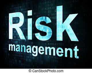 Management concept: pixelated words Risk management on digital screen, 3d render