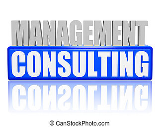 management consulting in 3d letters and block - management...