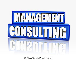 management consulting in blue blocks