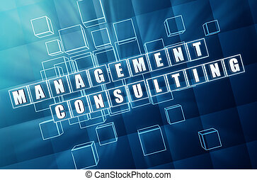 management consulting in blue glass cubes
