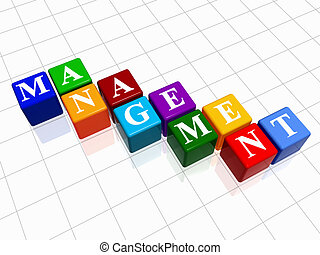 management in colour 2 - 3d colour boxes with text -...