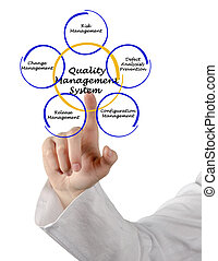 management, kvalita, systém