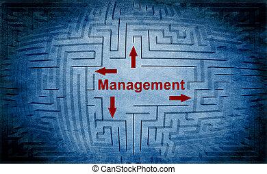 Management maze concept