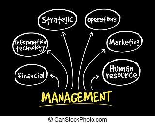 Management mind map business concept