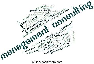 management, raadgevend
