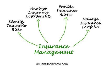 management, verzekering