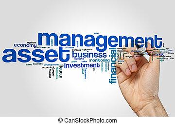 management, woord, aanwinst, wolk