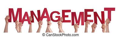 management, woord, mensen, velen, holdingshanden, rood