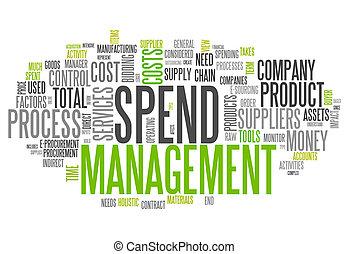 management, woord, uitgeven, wolk