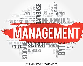 Management word cloud