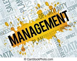 Management word cloud collage