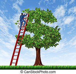 Managing your money and debt management with a business man on a ladder taking care of a tree that is shaped as a dollar symbol as a financial concept of wealth growth and economic advice.