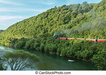 Manawatu Gorge Steam Train - Steam Train passing though the...