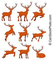 manchado, cute, diferente, jogo, veado, deers, vetorial, ilustrações, poses, caricatura