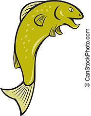 manchado, pez, saltar, caricatura, trucha
