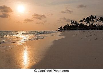 Manchebo beach on Aruba island at sunset