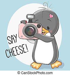 manchots, appareil photo