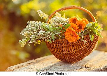 mand, bloemen, tuin