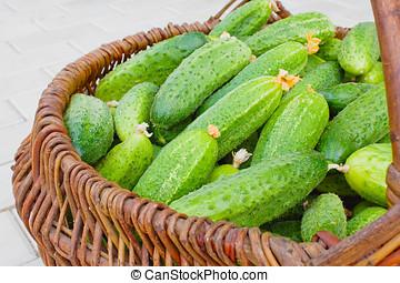 mand, gevulde, door, komkommers