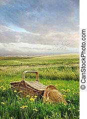mand, groot gras, picknick, hoedje