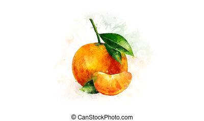 Mandarin Animation on the alpha channel - A beautiful...