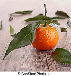 mandarin fruit or tangerine