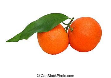 Mandarin isolated over the white with clipping path