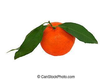 mandarin, isoleret, hen, den, hvid, hos, udklip sti