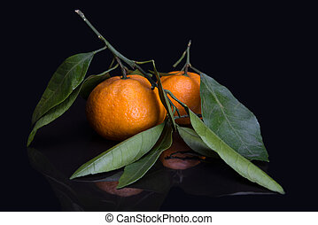 mandarin or tangerine with leaves and branches on a black...