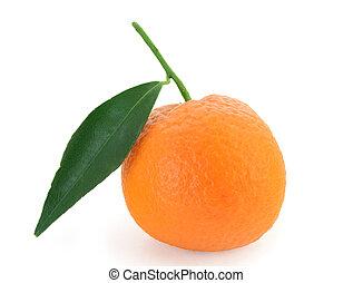 Mandarin orange - citrus reticulata - Mandarin orange with...