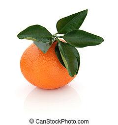 Mandarin Orange - Mandarin orange with leaf sprig isolated...