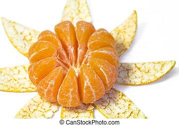 Mandarin Orange on white background.