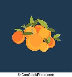 Mandarin set. Vector illustration on background