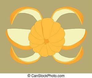 mandarin slices. Fruit vector drawing illustration