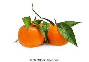 mandarin, sobre, fundo branco