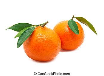 mandarin -  tangerine isolated on a white background
