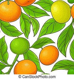 mandarin vector pattern