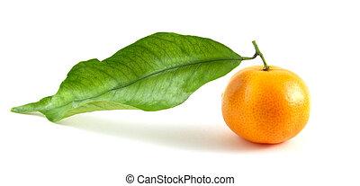 Mandarin with leaf isolated on white background